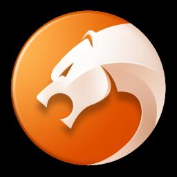 金山猎豹浏览器软件