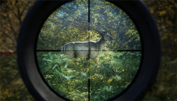 猎人野性的呼唤
