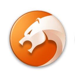猎豹安全浏览器电脑版