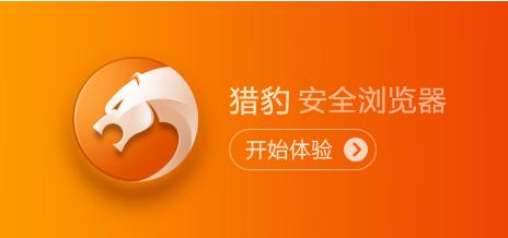 猎豹安全浏览器电脑版图4