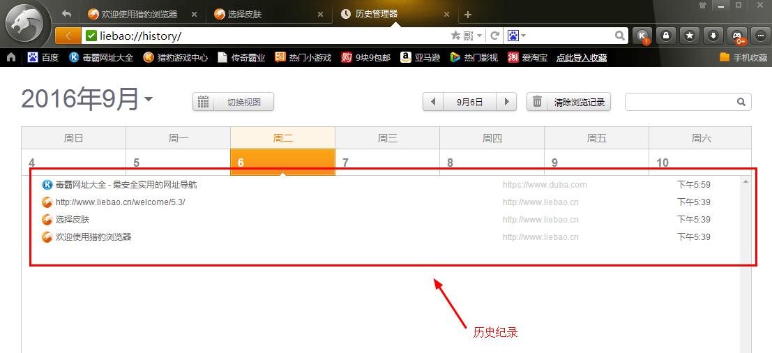 猎豹安全浏览器电脑版图8
