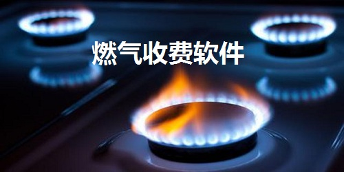燃气收费软件